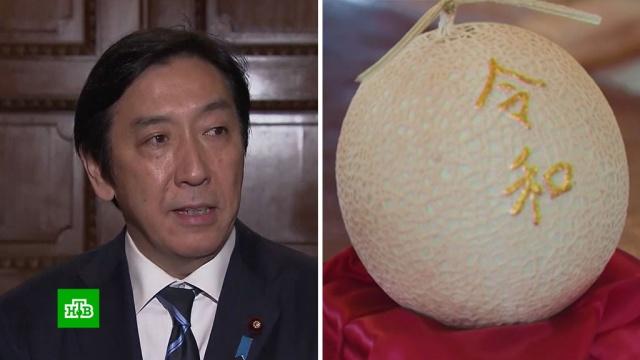 Японский министр ушел в отставку из-за скандала с дынями.Япония, назначения и отставки, скандалы.НТВ.Ru: новости, видео, программы телеканала НТВ