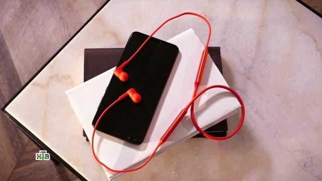 Чистота без проводов: на что способна мобильная мини-мойка.НТВ.Ru: новости, видео, программы телеканала НТВ