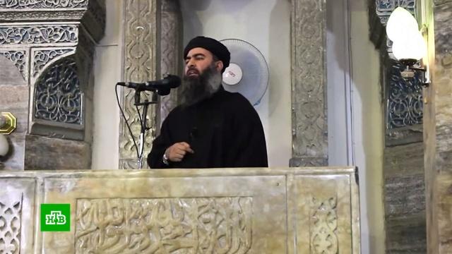«Умер, как трус»: Трамп подтвердил смерть главаря ИГИЛ.Исламское государство, Сирия, США, телефонный терроризм.НТВ.Ru: новости, видео, программы телеканала НТВ