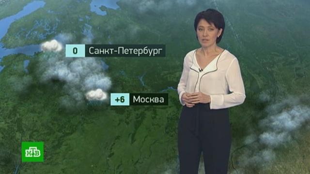 Утренний прогноз погоды на 29октября.погода, прогноз погоды.НТВ.Ru: новости, видео, программы телеканала НТВ
