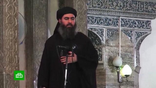 Информатор получит $25млн за помощь вликвидации аль-Багдади.Исламское государство, США, терроризм.НТВ.Ru: новости, видео, программы телеканала НТВ