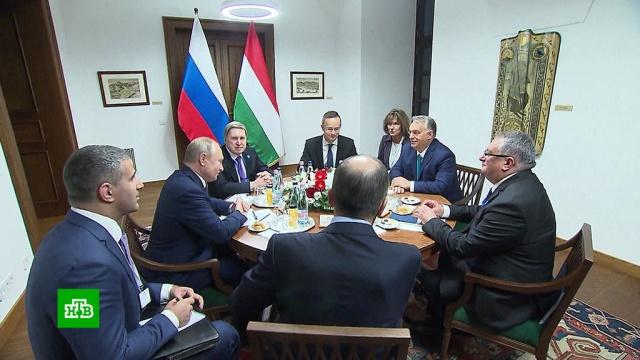 ВБудапеште проходят переговоры Путина иОрбана.Венгрия, Путин, переговоры.НТВ.Ru: новости, видео, программы телеканала НТВ