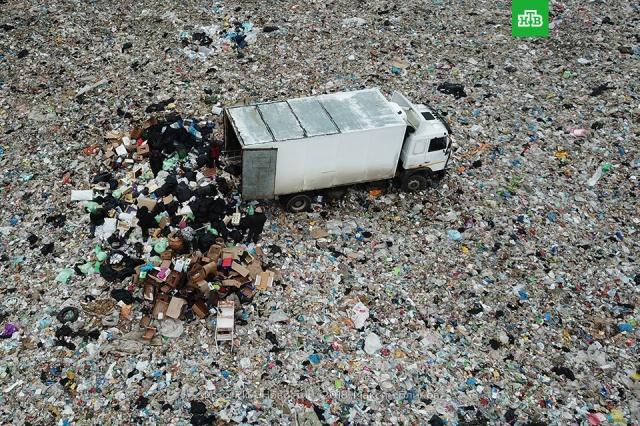 Мусорная реформа: ожидания и реальность.мусор, экология.НТВ.Ru: новости, видео, программы телеканала НТВ