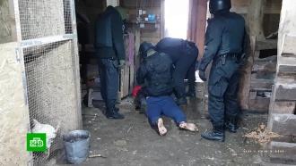 ВСибири поймали обманувших тысячу человек кредитных аферистов