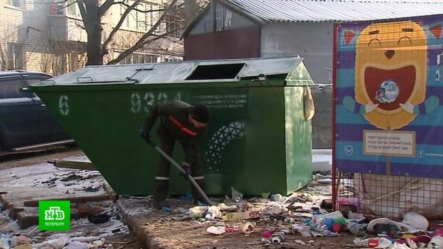 Строительные отходы из Петербурга вредят мусорной реформе в Ленобласти.Ленинградская область, Санкт-Петербург, мусор, экология.НТВ.Ru: новости, видео, программы телеканала НТВ