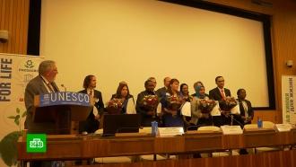 Россиянка победила в международном конкурсе ЮНЕСКО по химии