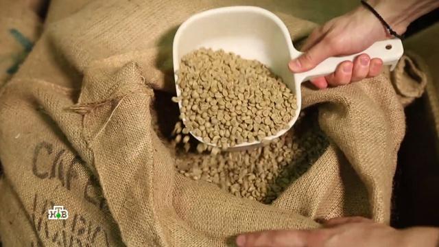 Зеленый кофе помогает похудеть: правда или миф.еда, лишний вес/диеты/похудение, продукты.НТВ.Ru: новости, видео, программы телеканала НТВ