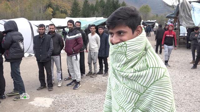 Балканский трафик мигрантов приносит до 1 млн евро в день с участка.Балканы, Европейский союз, мигранты.НТВ.Ru: новости, видео, программы телеканала НТВ