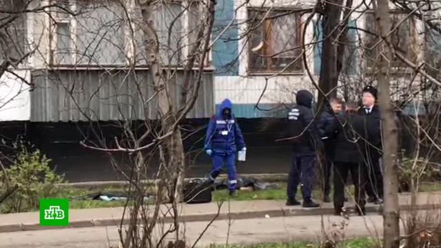 Вквартире погибшей москвички нашли предсмертную записку.Москва, дети и подростки, расследование, самоубийства, смерть.НТВ.Ru: новости, видео, программы телеканала НТВ