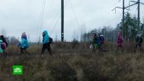 ВКировской области дети ходят вшколу через лес, кладбище ижелезную дорогу