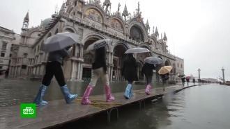 Венеция переживает рекордное за полвека наводнение