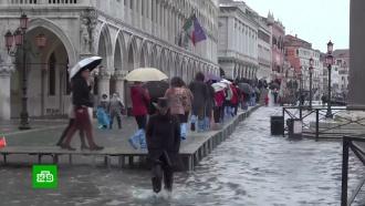 «Апокалипсис» вВенеции: появились первые жертвы наводнения