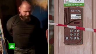 ВНовой Москве задержали «Буншу», залившего домофон кислотой