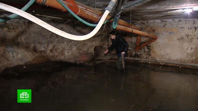 Подвал исторического дома в центре Петербурга оказался затоплен нечистотами.ЖКХ, Санкт-Петербург.НТВ.Ru: новости, видео, программы телеканала НТВ