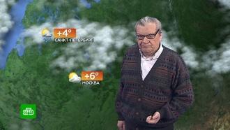Прогноз погоды на 16 ноября.НТВ.Ru: новости, видео, программы телеканала НТВ