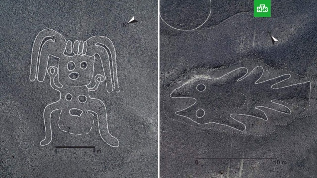 Загадочные рисунки в перуанской пустыне.Исследователи из японского Университета Ямагата обнаружили на плато Наска в южном Перу 143 новых геоглифа, на которых изображены животные и другие существа, а также загадочные «монстры» с квадратными головами..археология, история, наука и открытия, Перу.НТВ.Ru: новости, видео, программы телеканала НТВ