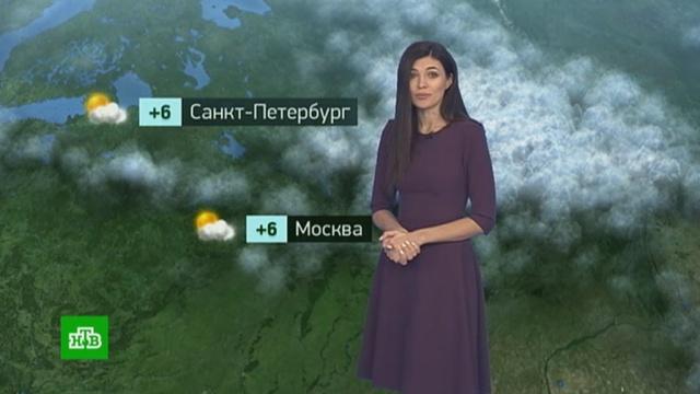 Утренний прогноз погоды на 18ноября.погода, прогноз погоды.НТВ.Ru: новости, видео, программы телеканала НТВ