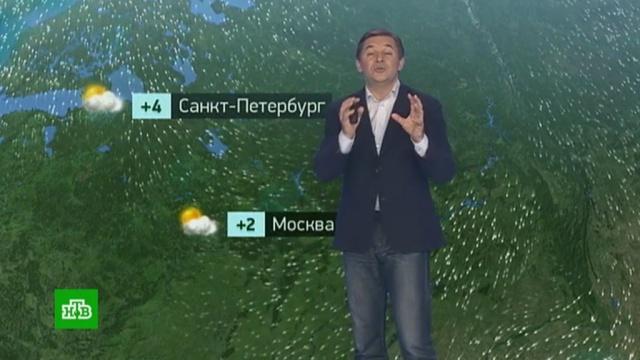 Утренний прогноз погоды на 20ноября.погода, прогноз погоды.НТВ.Ru: новости, видео, программы телеканала НТВ