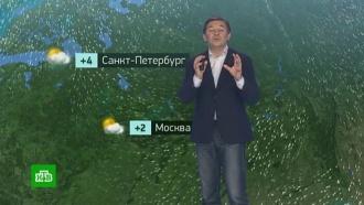 Утренний прогноз погоды на 20ноября