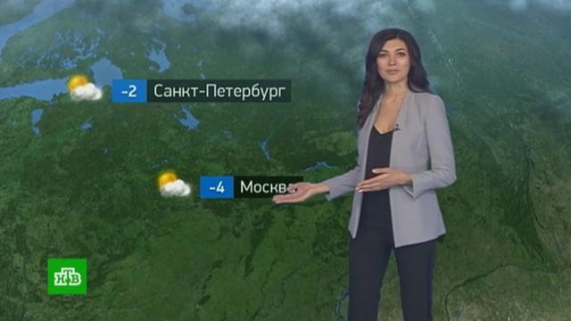 Утренний прогноз погоды на 22ноября.погода, прогноз погоды.НТВ.Ru: новости, видео, программы телеканала НТВ