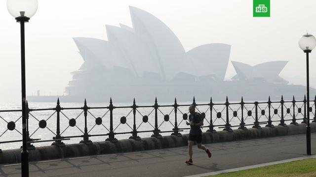 Смог накрыл Сидней третий раз за неделю.Сидней продолжает страдать из-за масштабных лесных пожаров, начавшихся в Австралии месяц назад. Мегаполис вновь окутан плотной пеленой смога.Австралия, лесные пожары, пожары.НТВ.Ru: новости, видео, программы телеканала НТВ