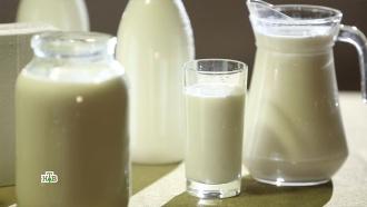 Пастеризованное или парное: какое молоко полезнее