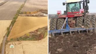 Колониальное будущее: к чему приведет продажа земли на Украине.НТВ.Ru: новости, видео, программы телеканала НТВ