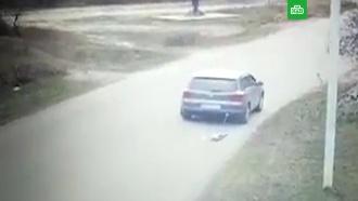 Украинский чиновник протащил по дороге привязанную кмашине собаку