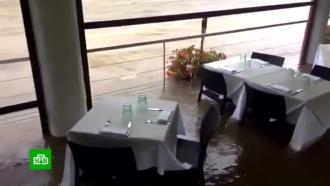 Потоп на Лазурном Берегу: улицы Ниццы иКанн превратились вгрязные болота