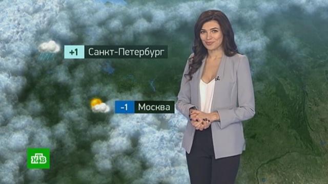Утренний прогноз погоды на 28ноября.погода, прогноз погоды.НТВ.Ru: новости, видео, программы телеканала НТВ