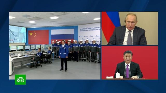 Путин иСи Цзиньпин запустили «Силу Сибири».Газпром, Китай, Путин, газ, газопровод.НТВ.Ru: новости, видео, программы телеканала НТВ