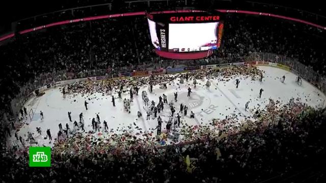 Хоккейные фанаты бросили на лед более 45 тысяч плюшевых мишек.Рождество, США, благотворительность, игры и игрушки, хоккей.НТВ.Ru: новости, видео, программы телеканала НТВ