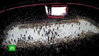 Хоккейные фанаты бросили на лед более 45 тысяч плюшевых мишек