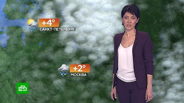Прогноз погоды на 5 декабря.погода, прогноз погоды.НТВ.Ru: новости, видео, программы телеканала НТВ