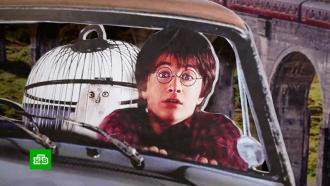 Ожидание и реальность: в Сети высмеяли суровую челябинскую выставку о Гарри Поттере