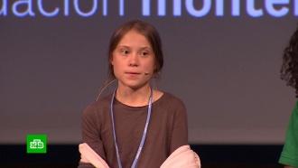 Грета Тунберг призналась внеэффективности экоактивизма