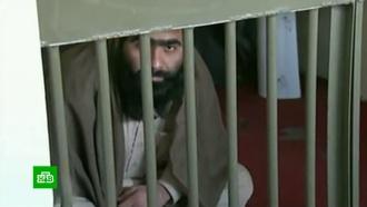 «Держали голыми иприкованными кстене»: американцев обвинили впытках пленных исламистов