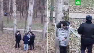 Буйного москвича привязали кдереву пленкой