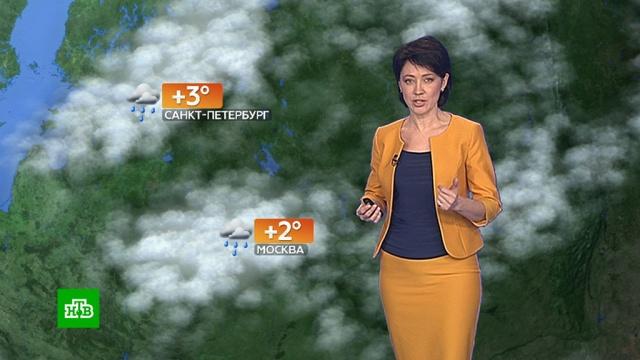 Прогноз погоды на 10 декабря.погода, прогноз погоды.НТВ.Ru: новости, видео, программы телеканала НТВ