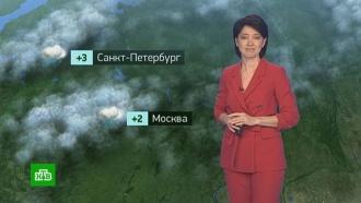 Утренний прогноз погоды на 10декабря