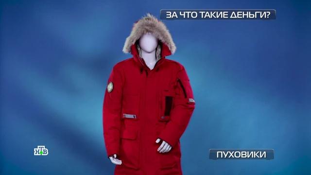 Пуховики: каким образцам любой мороз нипочем.НТВ.Ru: новости, видео, программы телеканала НТВ