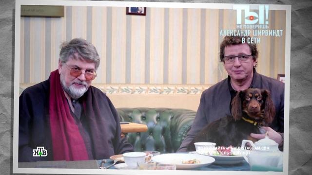 85-летний Александр Ширвиндт осваивает соцсети.знаменитости, шоу-бизнес, эксклюзив, артисты, соцсети, Интернет.НТВ.Ru: новости, видео, программы телеканала НТВ