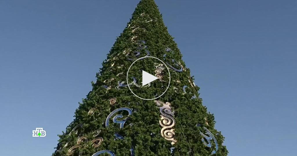 Искусственная, срубленная или вгоршке— какая елка лучше ибезопаснее?