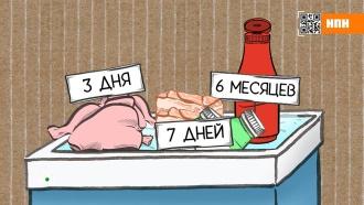 Сколько можно хранить оливье и открытые бутылки с алкоголем
