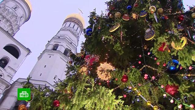ВКремле нарядили главную елку страны.Москва, Новый год, торжества и праздники.НТВ.Ru: новости, видео, программы телеканала НТВ
