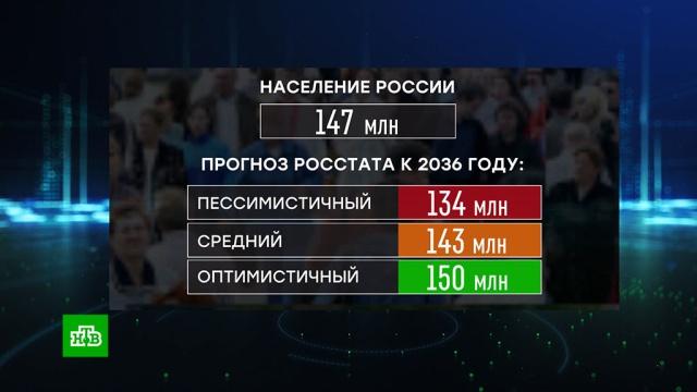 Росстат опубликовал демографический прогноз на 16лет.демография, социология и статистика.НТВ.Ru: новости, видео, программы телеканала НТВ