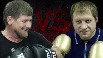 Бой века: кто победит— Кадыров или Емельяненко?НТВ.Ru: новости, видео, программы телеканала НТВ