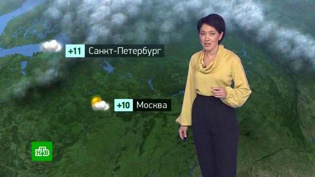 Утренний прогноз погоды на 28октября.погода, прогноз погоды.НТВ.Ru: новости, видео, программы телеканала НТВ