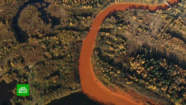 Отравлены 500км рек: старые шахты вПермском крае стали причиной экологического бедствия.Пермский край, реки и озера, шахты и рудники, экология.НТВ.Ru: новости, видео, программы телеканала НТВ