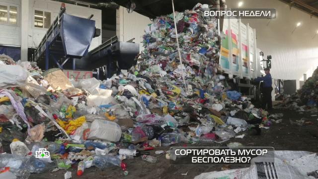 Неужели сортировать мусор бесполезно?НТВ.Ru: новости, видео, программы телеканала НТВ